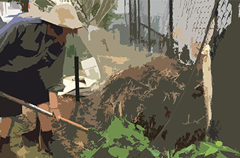 Compost_Featured